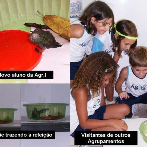 4d68120647361922313023-aluno_novo